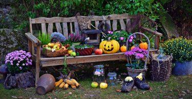 eventi autunno