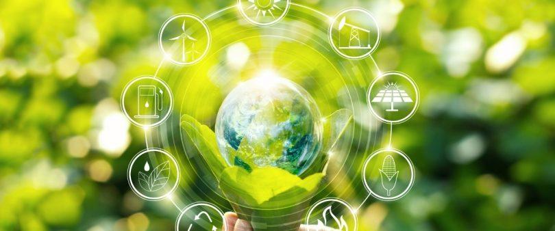 fiera online dedicata alla sostenibilità