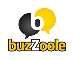 startup 2016 buzzoole