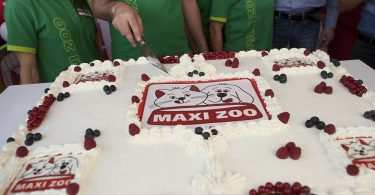 maxi zoo torta evento presentazione
